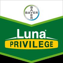 lunaprivilege-brandtag.png
