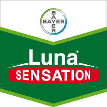 lunasensation-brandtag.png
