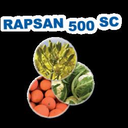rapsan-500-sc-belchim-agroespuna.png