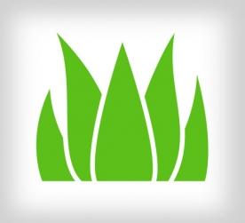 herbicida.jpg