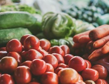 cambio-reglamentos-vegetales.jpg