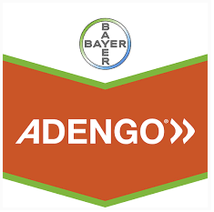 adengo-logo_1.png