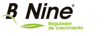 b-nine-logo.png