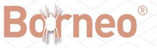 borneo-logo.png