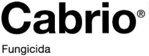 cabrio-logo.png