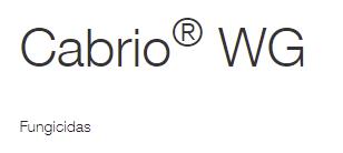 cabrio-wg-logo.png