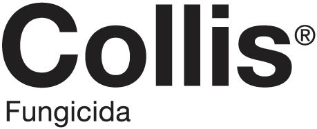 collis-logo_1.png