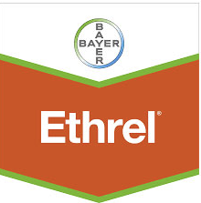 ethrel-logo_1.png