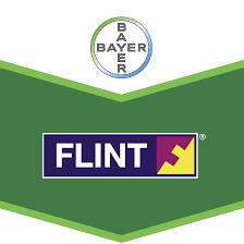 flint-logo_1.png