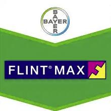 flint-max-logo_1.png