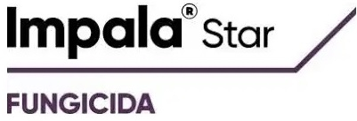 impala-star-logo.jpg