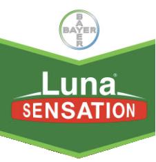 luna-sensation-logo.png