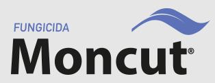 moncut-sc.png