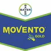 movento-gold-logo_1.png