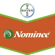 nominee-logo_1.png