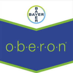 oberon-logo_1.png
