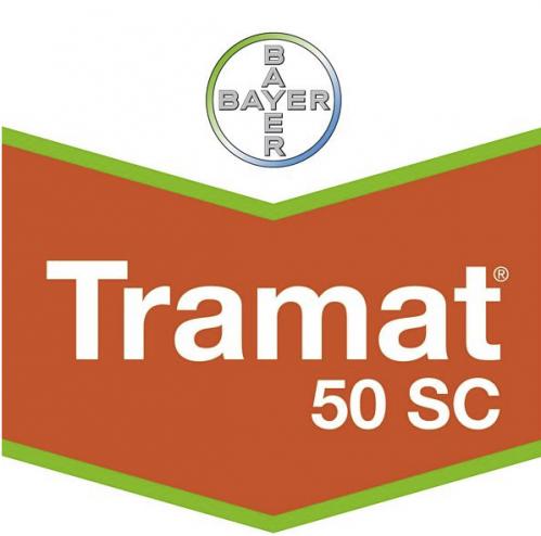 tramat-50-logo_1.png