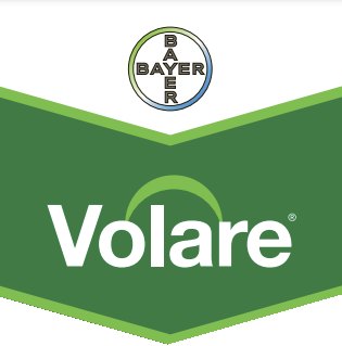 volare-logo_1.png